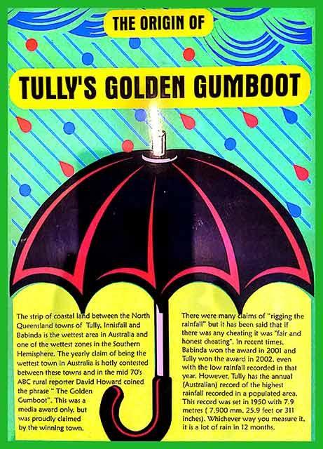 Tully Golden Gumboot Story